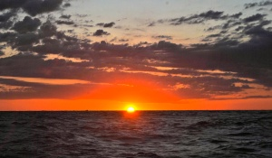 So many tremendous human beings have come to the aid of Catch a Cure.